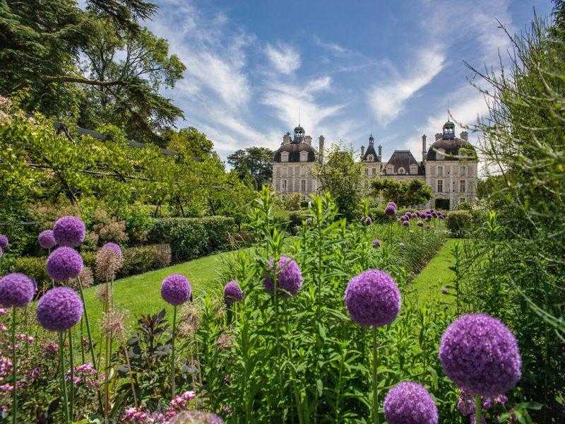 (294)ChâteaudeCheverny-jardindesapprentis2@digikode