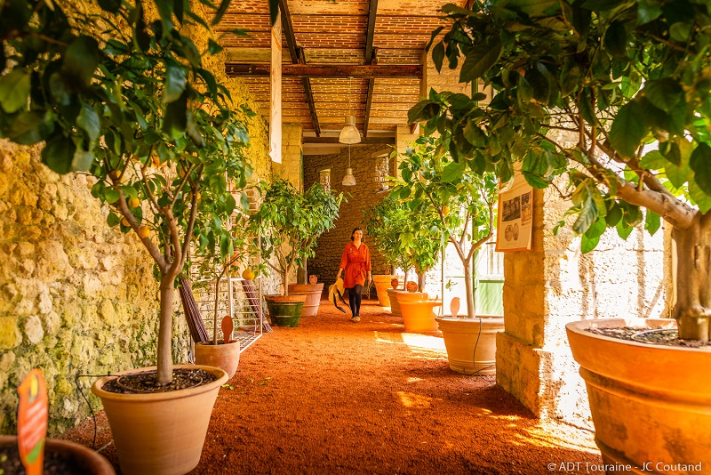Chateau_Gaillard_Credit_ADT_Touraine_JC_Coutand_2029-22