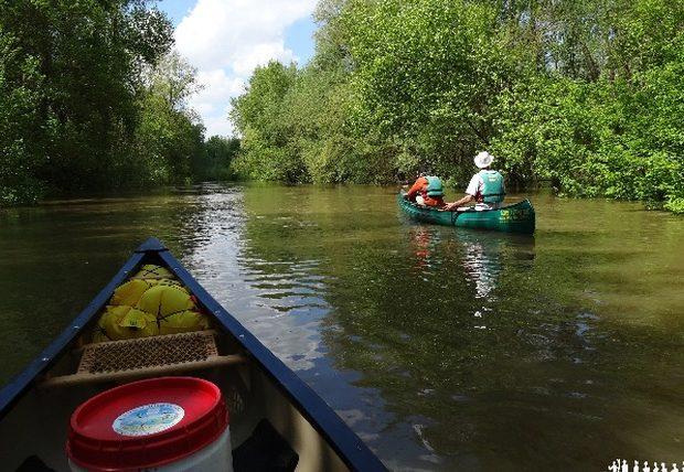 Loire Aventure, balades libres ou guidées à bord de canoës Canadiens