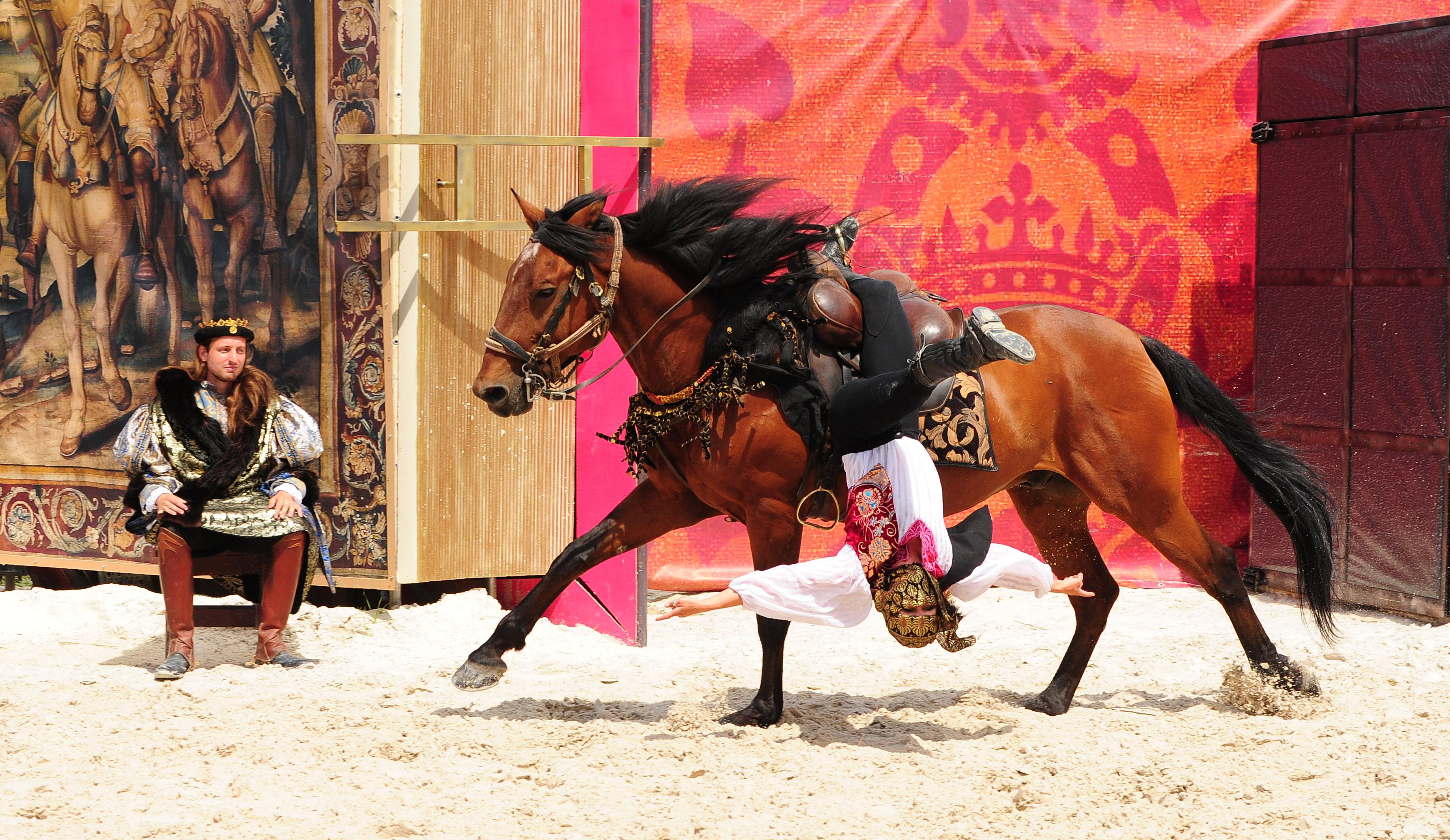 Spectacle chevaux et rapaces au château de Chambord – François 1er, le Roi-Chevalier